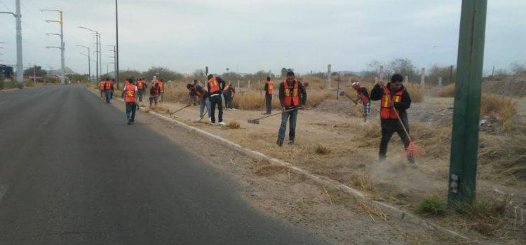 Limpian 2 mil 800 metros de maleza con trabajo comunitario