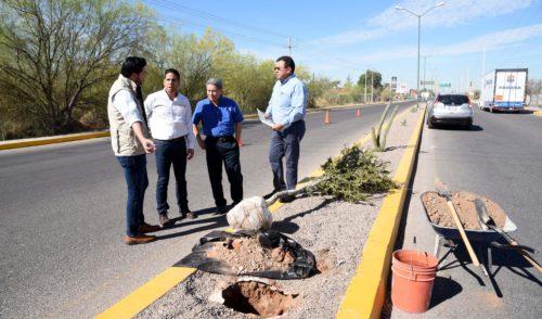 Adoptan tramo de bulevar en carretera a Sahuaripa