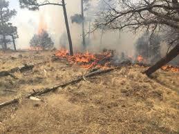 Coordina Unidad Estatal de Protección Civil combate a incendio forestal