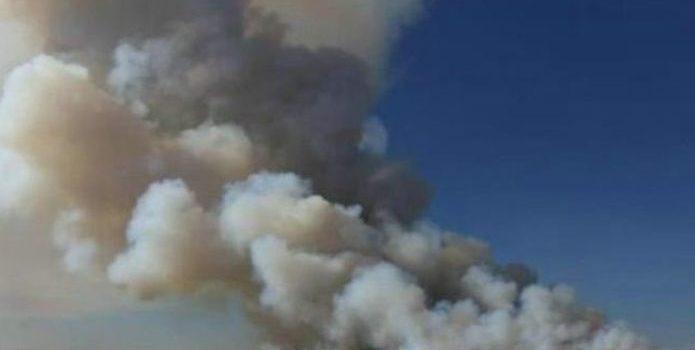 Se incendian más de mil toneladas de pacas de trigo en Mexicali