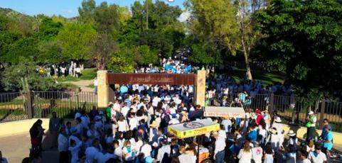 Marchan miles contra el aborto en Hermosillo