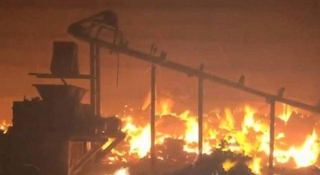 Inciendio en una bodega de carbón en Nuevo León