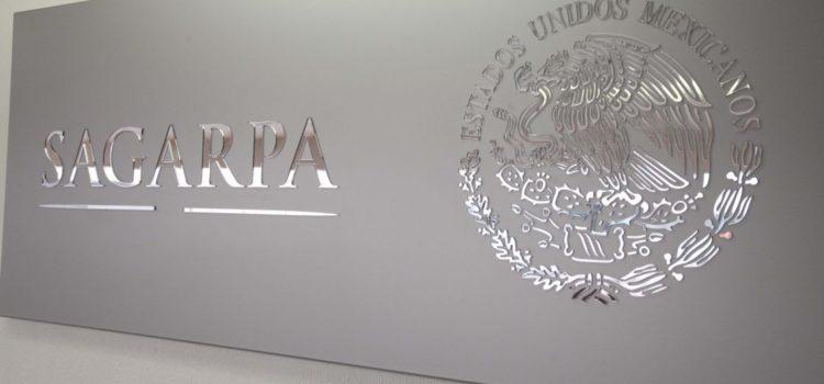 Actividades primarias en México crecen 3%