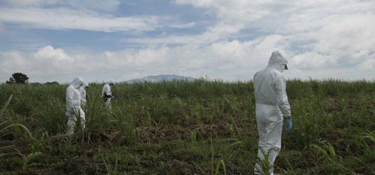 México, el país de las fosas clandestinas: en 11 años suman casi 2 mil hallazgos, revela investigación