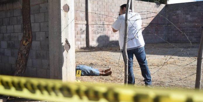 Colima, Baja California y Guerrero donde más homicidios ocurrieron