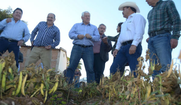 SADER y Gobierno de Sonora coordinan atención a productores afectados