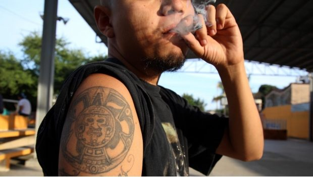 SCJN obligará a jueces a otorgar amparos para consumo personal de mariguana