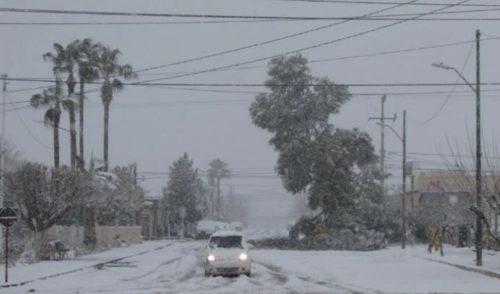 Esperan caída de nieve en la Sierra de Sonora