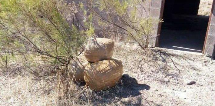 Aseguran cinco bultos con 50 kilos de mariguana en Nogales