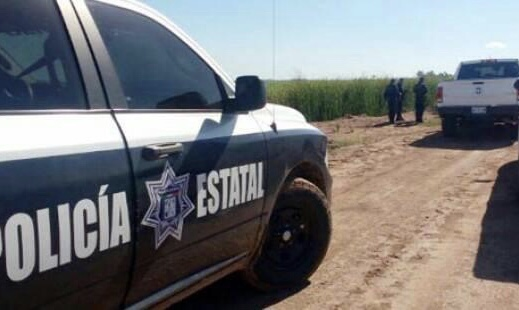 Investiga Fiscalía hallazgo de una osamenta al despoblado, en el campo 30, en el sur de Sonora