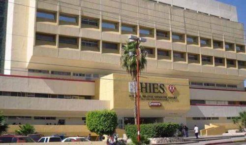 Enjambre de abejas ataca a 44 personas en Hermosillo