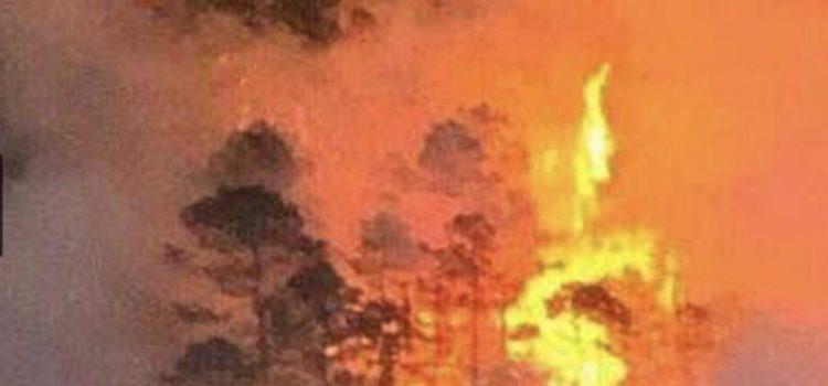 Solicitará Oaxaca declaratoria de emergencia por incendios forestales