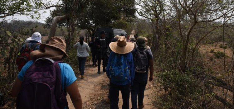 La prioridad número uno del Gobierno es la búsqueda de desaparecidos: López Obrador