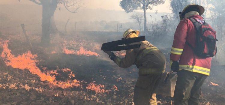 Suspenden clases en 229 escuelas por incendios forestales en Jalisco