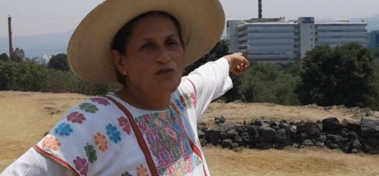 Jesusa Rodríguez en el Senado: Tres iniciativas en 9 meses y sueldo mensual de 105 mil pesos