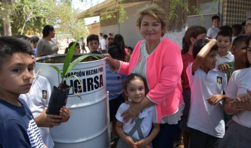 Cuidado del medio ambiente es tarea de todos: Gricelda Soto, diputada de Morena
