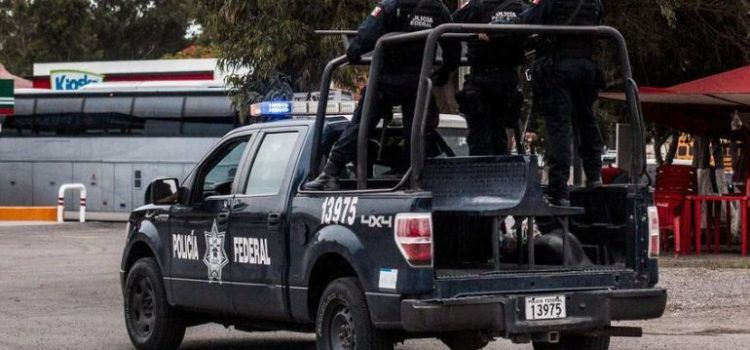 Más de 500 camionetas de la PF serán usadas para Guardia Nacional