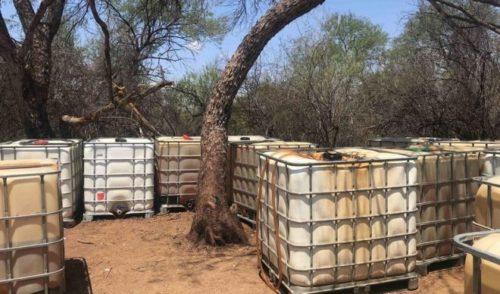 Huachicoleros tenían campamento en Sonora; policía lo desmantela